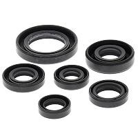XOS105 HONDA OIL SEAL KIT